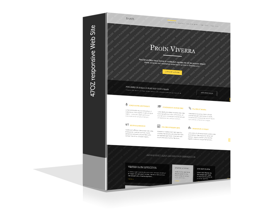 Paket Web Sitesi - basil