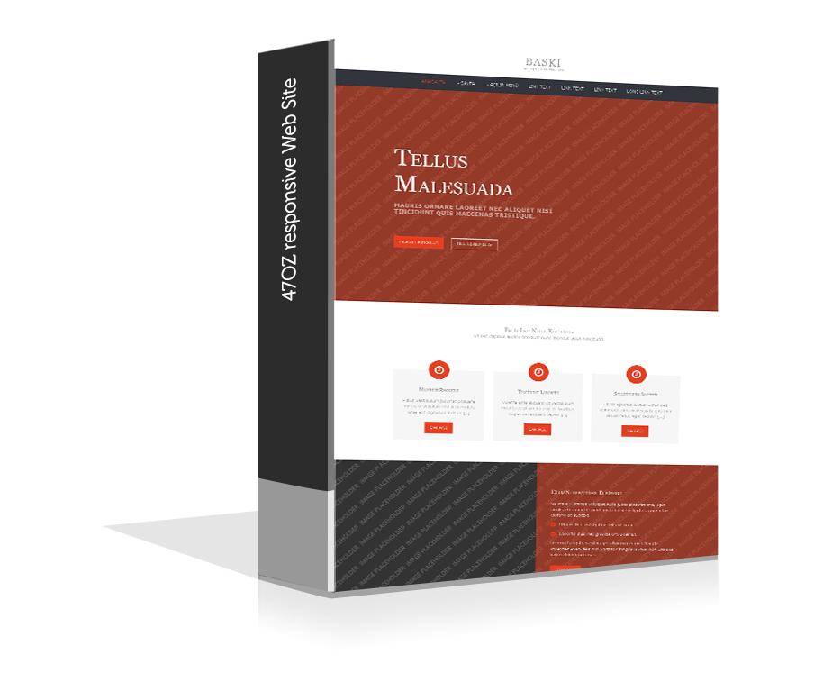 Paket Web Sitesi - baski