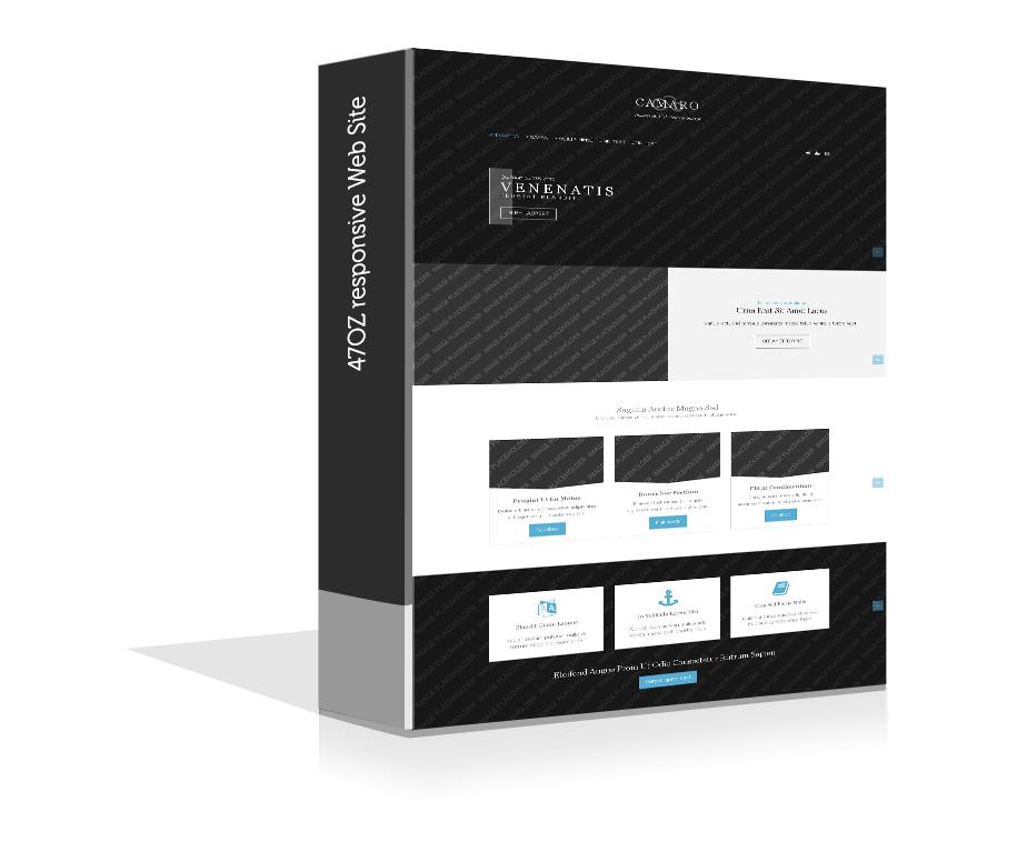 Paket Web Sitesi - camaro