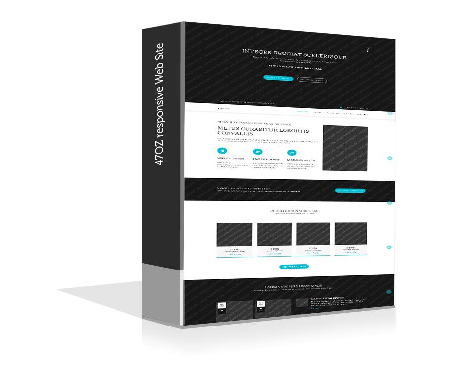 Paket Web Sitesi - farkis