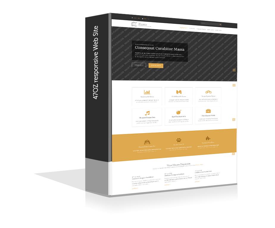 Paket Web Sitesi - febris