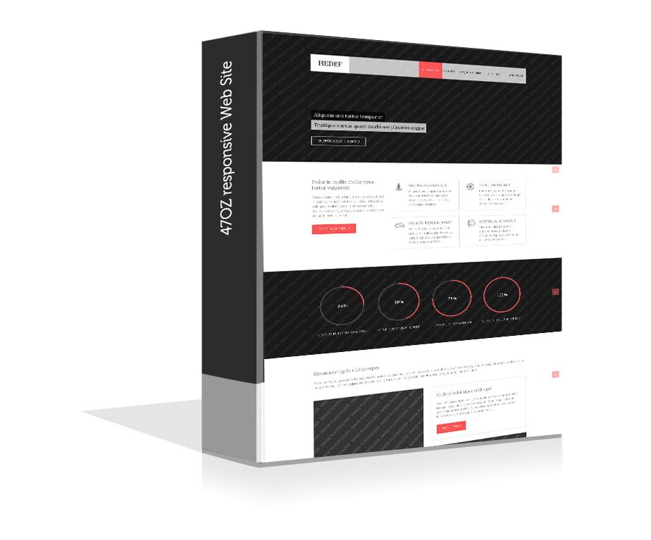 Paket Web Sitesi - Hedef