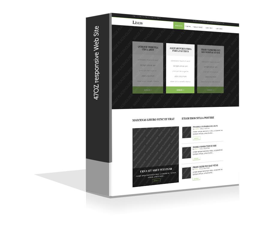 Paket Web Sitesi - Limos