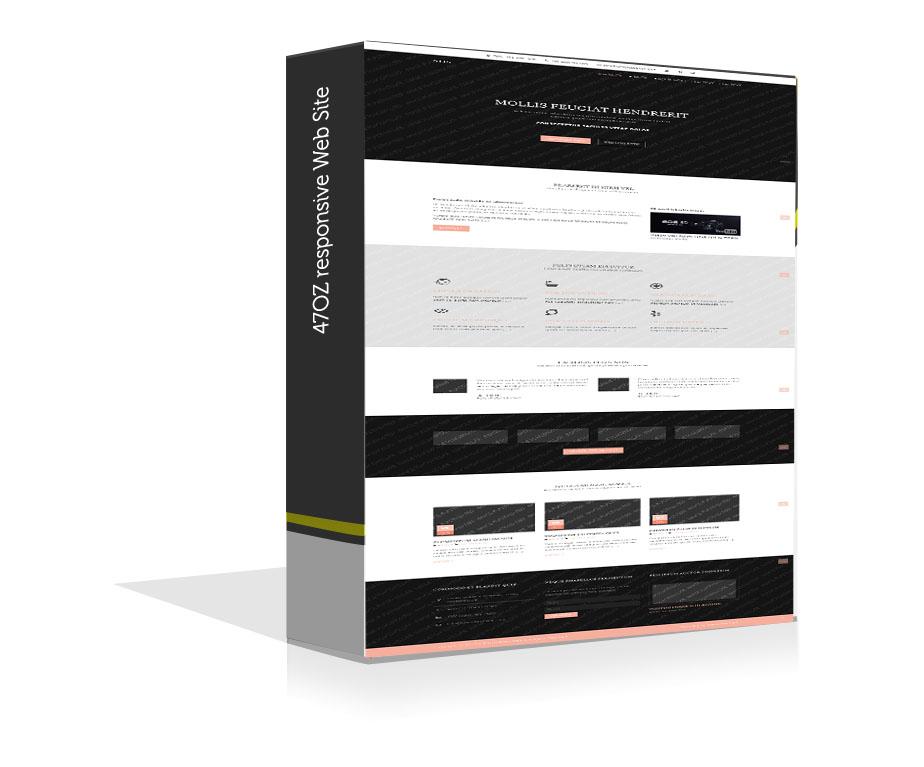 Paket Web Sitesi - Neis