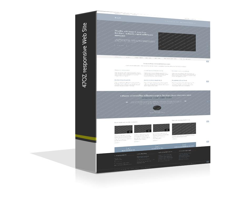 Paket Web Sitesi - Pan