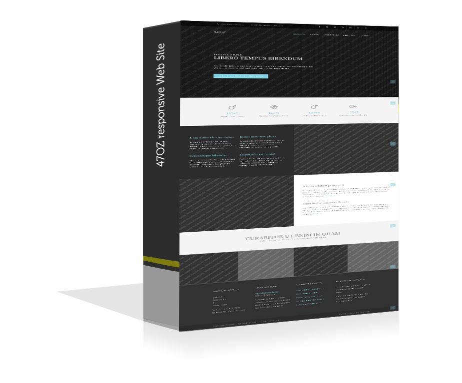 Paket Web Sitesi - Sanat