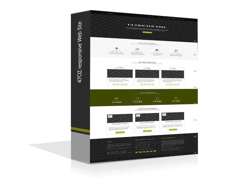 Paket Web Sitesi - Temel