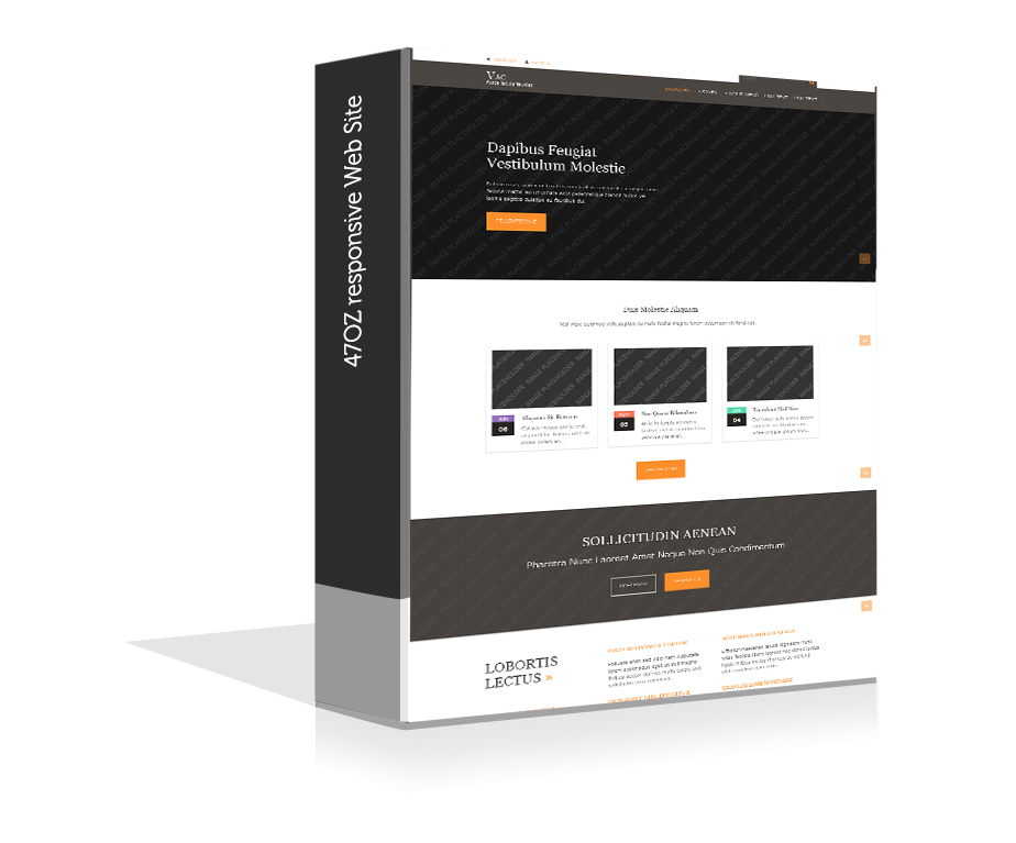 Paket Web Sitesi - Vac