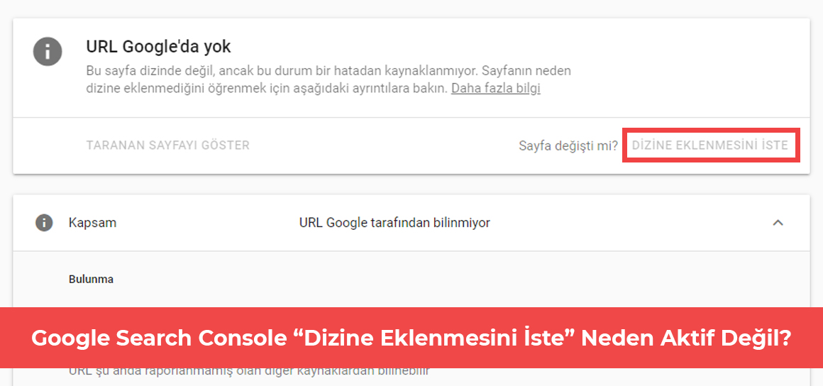 Google Search Console Dizine Eklenmesini İste Butonu neden aktif değil?